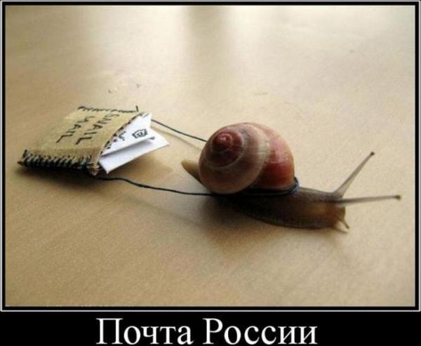 Сайт Рыжакова О.И. (Alex Spacon) демотиватор - Почта России